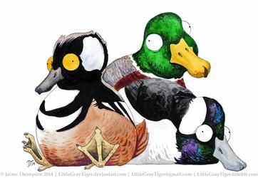 Fat Ducks