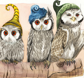 Strange White Faced Owls