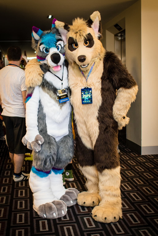 FurDU 2017: Unnamed Husky and Trak