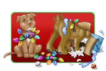 Buddy and Obi's Christmas