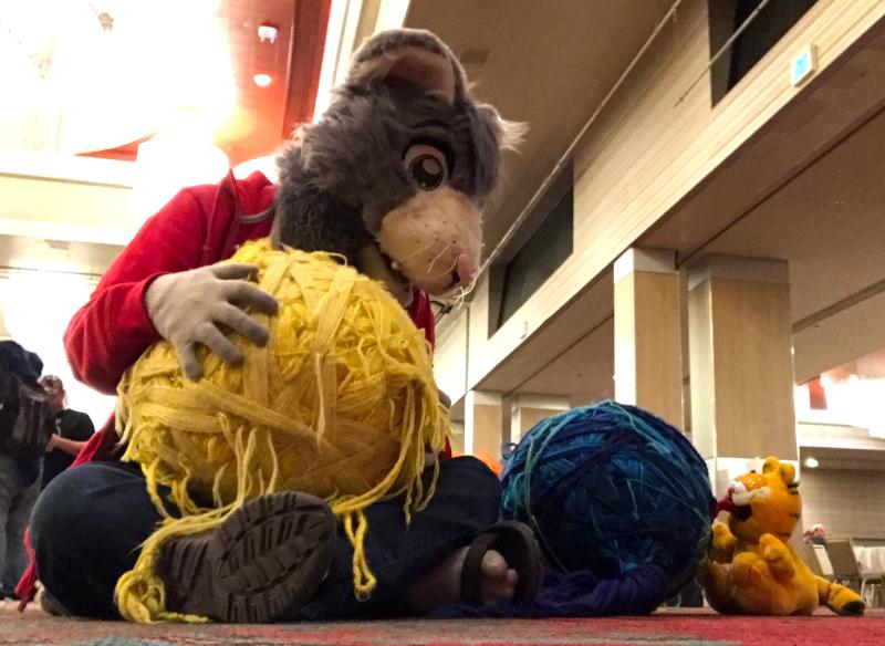 Cats and balls of yarn (BLFC18)