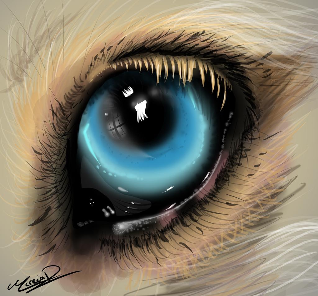 my fursona realistic eye