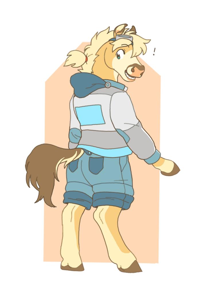 Cai horse
