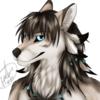 avatar of Telkop