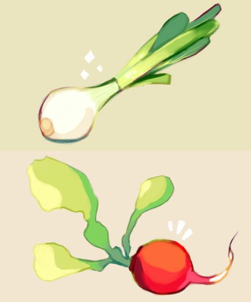 onion x radish