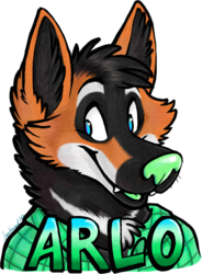 Arlo Badge