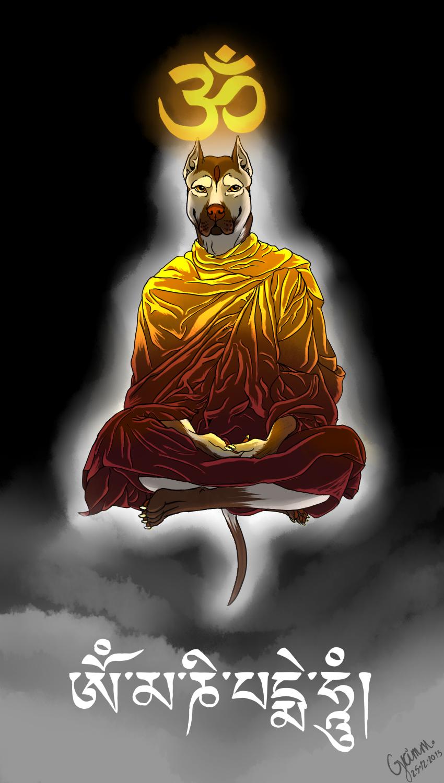 Most recent image: enlightenment.