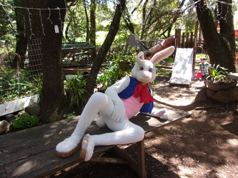 The Easter Bunny being modest.
