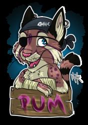 .: Pum is a cute pirate [COM]