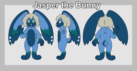 Jasper Reference
