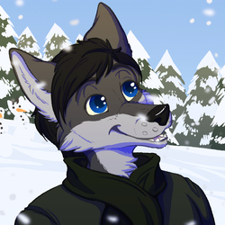 [g] Forefox Winter Time - ANIMATED