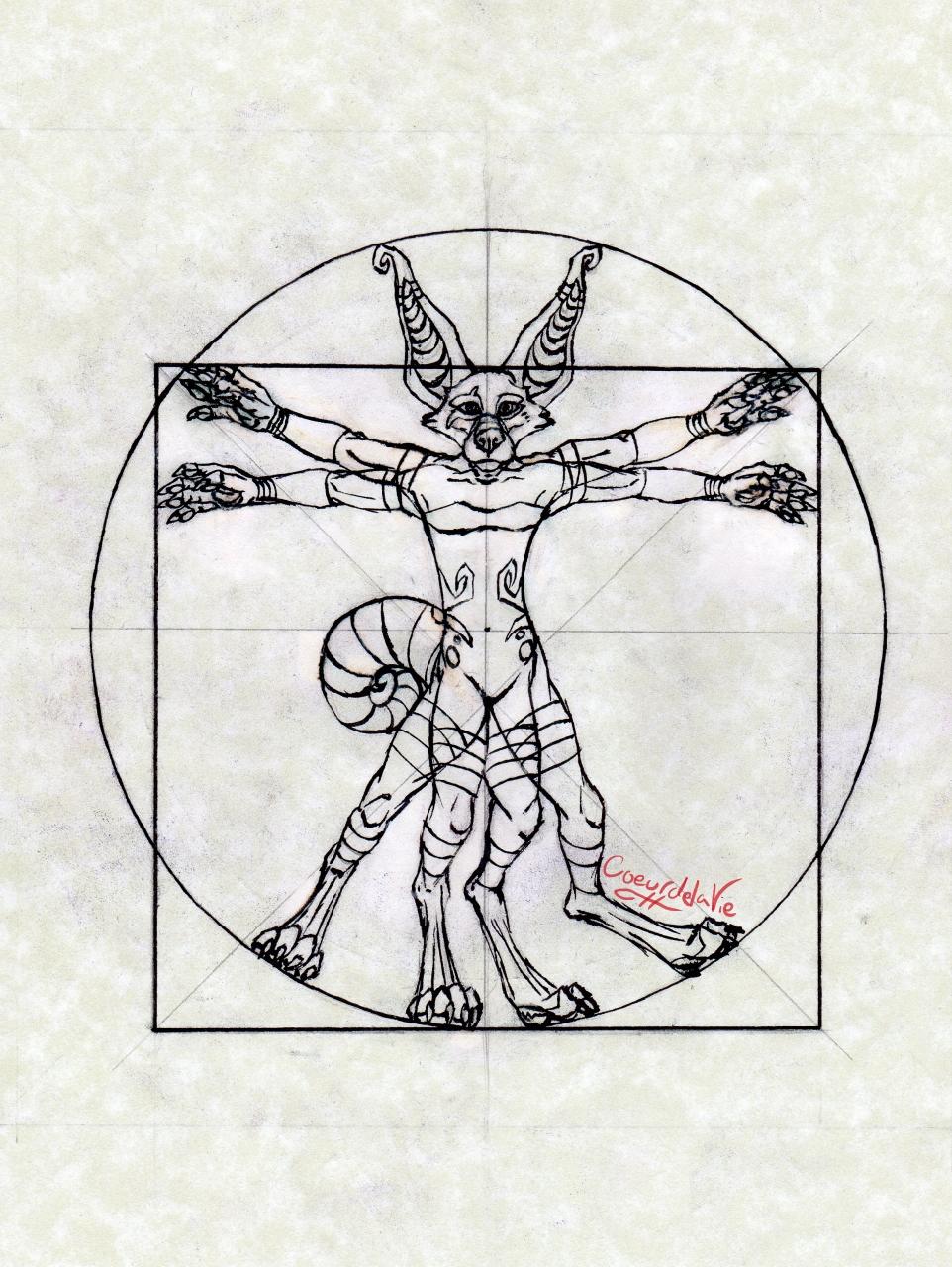 Most recent image: Vitruvian Crux