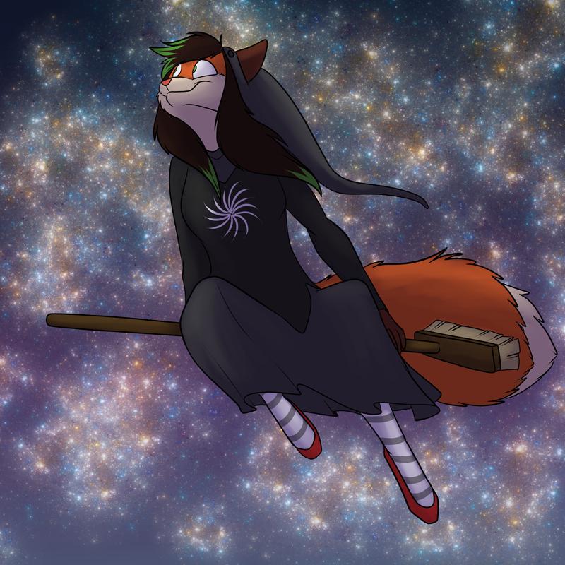 Most recent image: Flying Socks