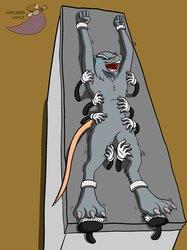Master Splinter's tickle torture