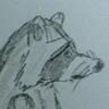 Avatar for Higgs Raccoon
