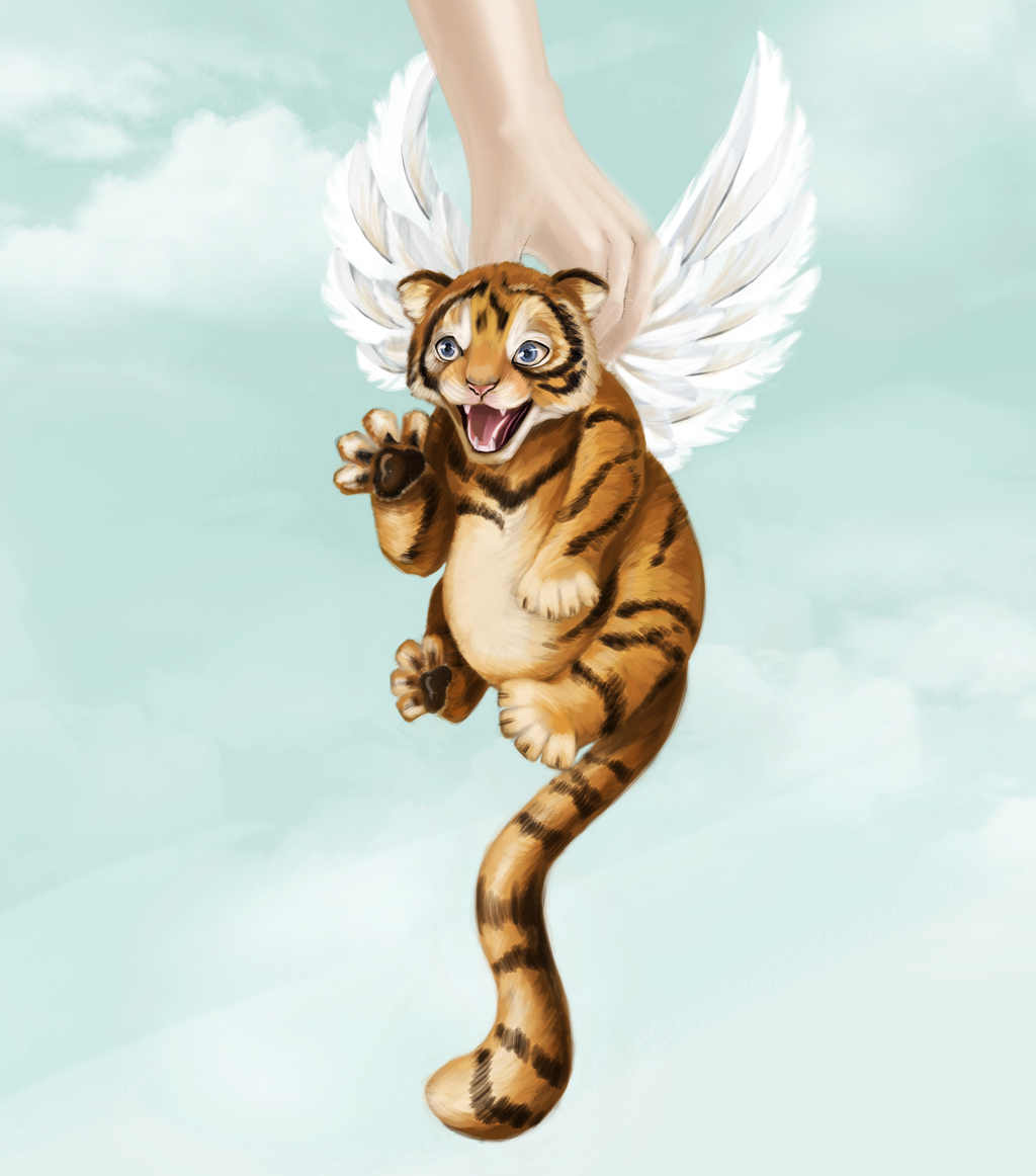 Most recent image: A little winged tiger