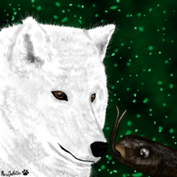 The Wolf And The Snake
