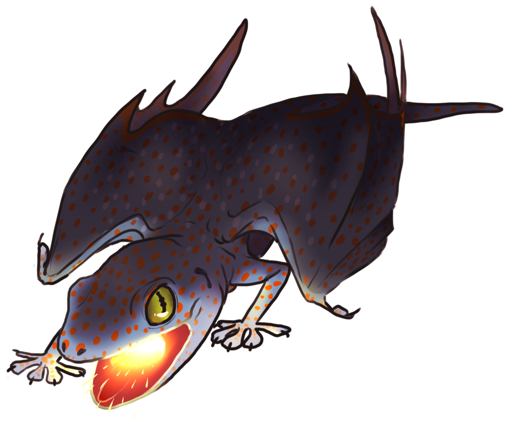 Most recent image: Tokay Dragon
