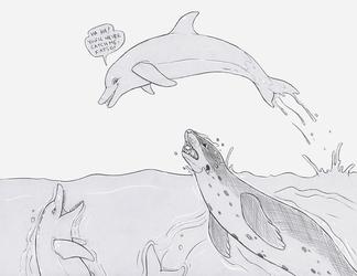 Natiq, Salome and the dolphin