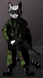 Ransom: Rifle Cat