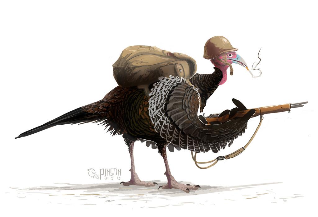Turkey 44