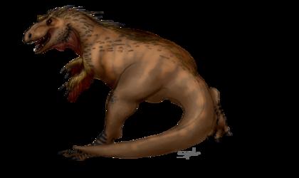 Another Look at the Tyrannosaurus Rex