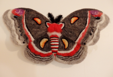Cecropia Moth Needle Felted Wall Decor