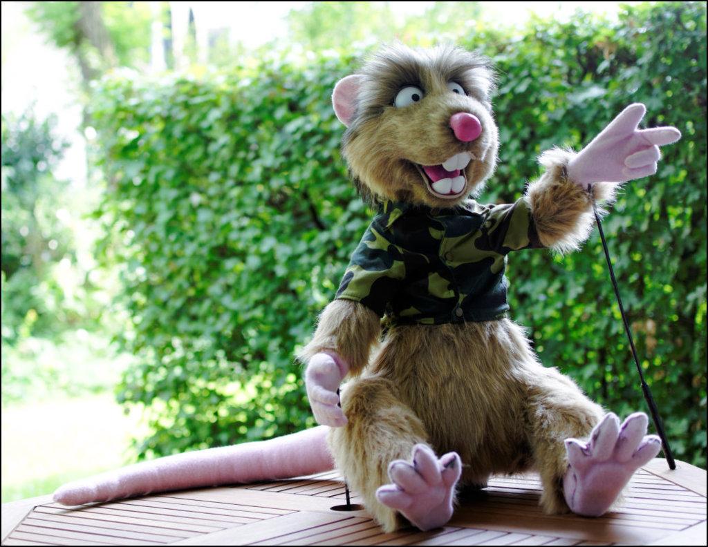 Louis the  rat puppet