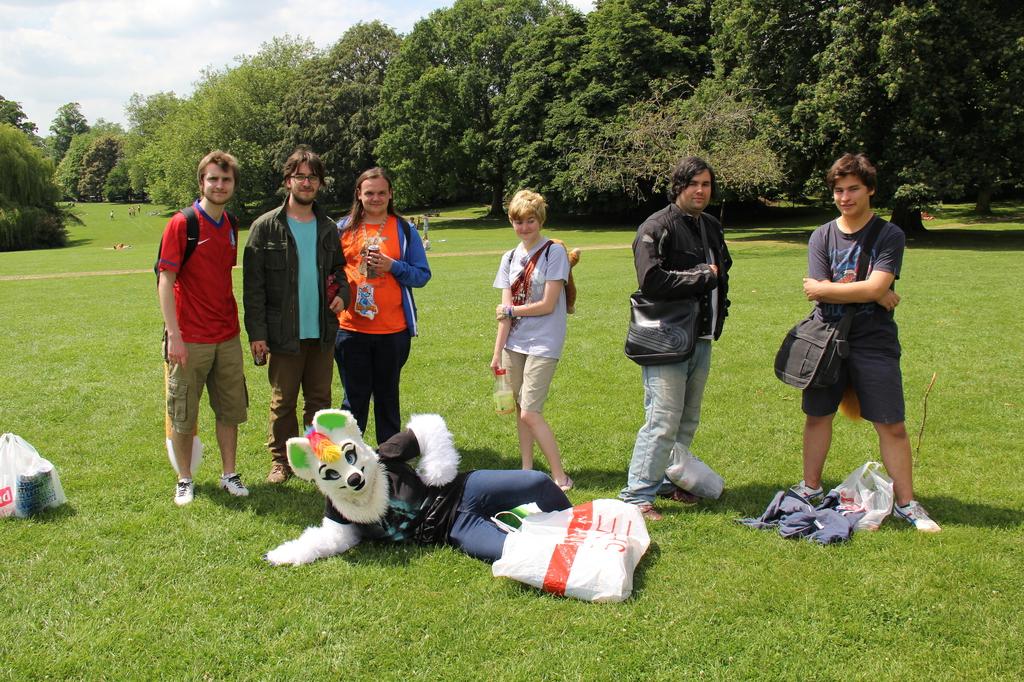 Bath Furmeet June 2014 Group Photo