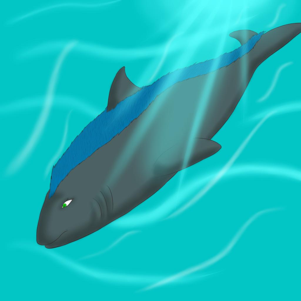 Most recent image: Underwater Crature