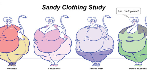 Sandy Clothing Study