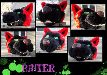 Rinter head