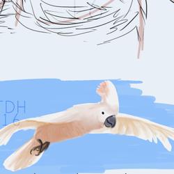 Decembird 2