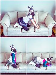 Foxx Pup