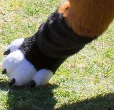 FurJAM: Sporting Furs