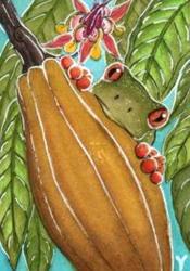 Cocoa Frog II