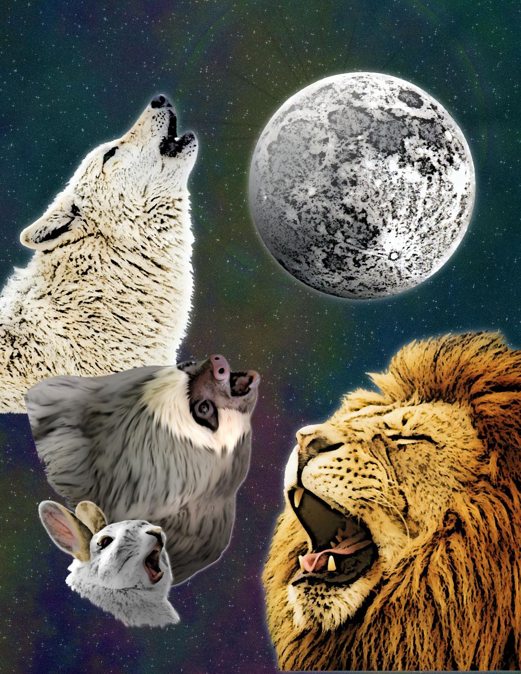 Four Friends Moon