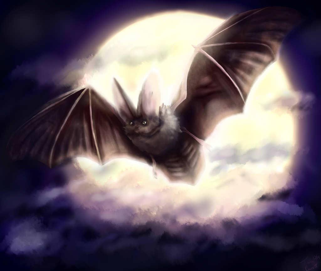 Nightmare Bat (Commission for AdoptionisLove)