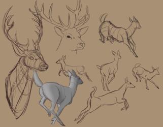 deer weasyl...