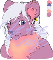 Lioness Headshot Adopt (CLOSED)