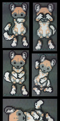 African Wild Dog Lite (Original Design)