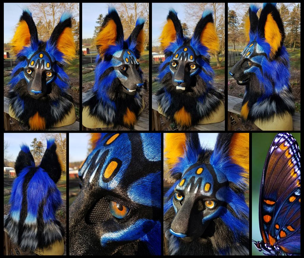 Blu Butterfly Cat Mask!
