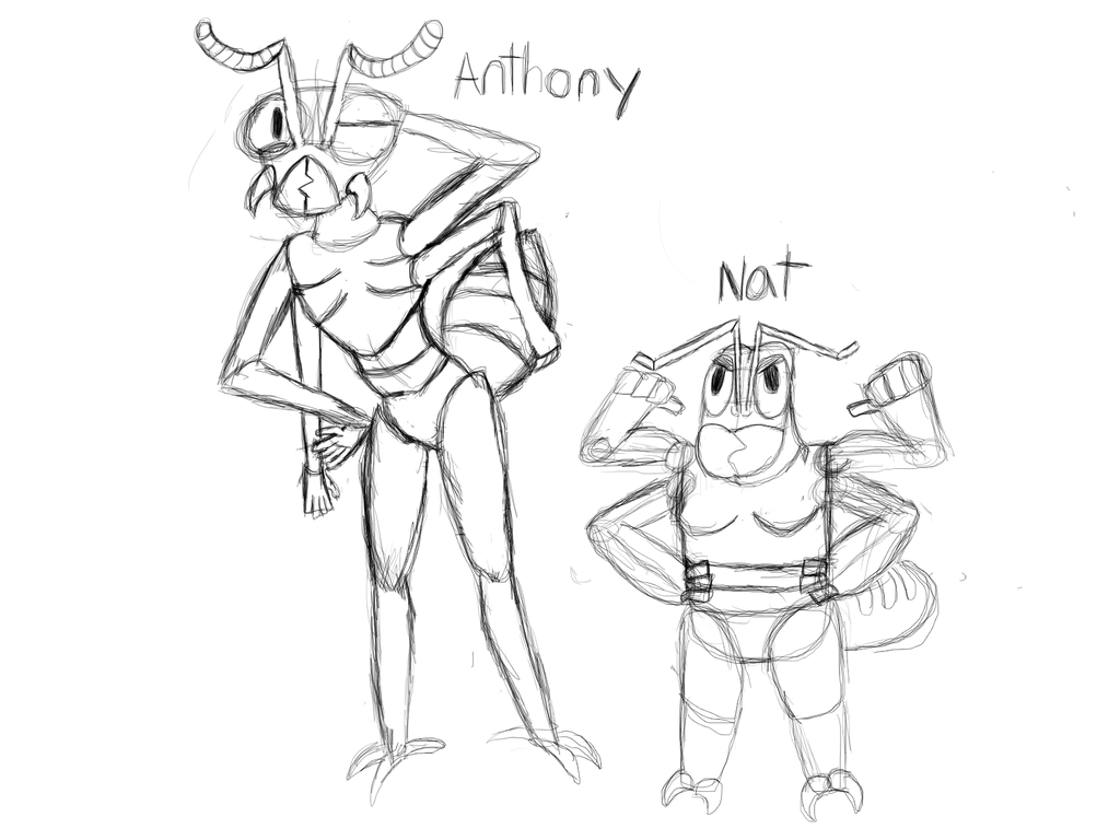 Redesigns