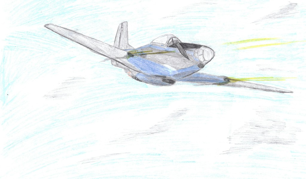 F-51D In Action