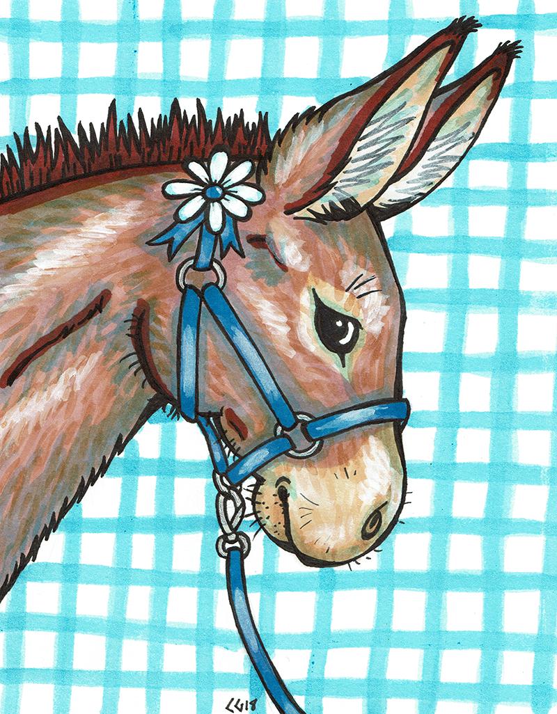 Daisy Donkey