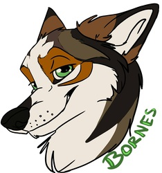Bornes Badge by Sharpe