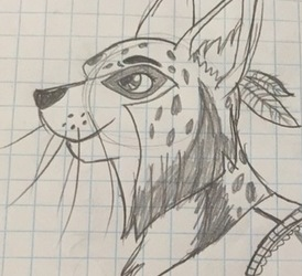 Lynx Lady