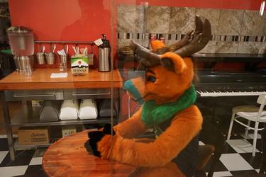 Cafe Deer