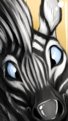 Zebra Boop! Commission