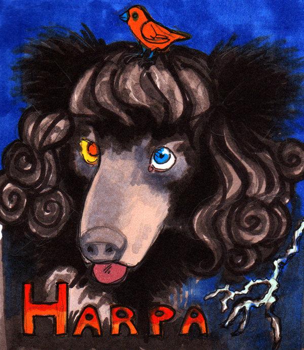 Most recent image: Harpa Badge